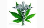 Terapia e prescrizione di Cannabis Medica per il trattamento di varie patologie